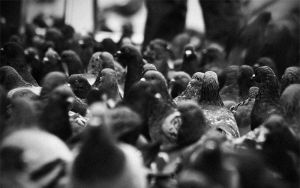 lost in the crowd by Freeq22