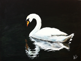 The Swan Song by ms24khan