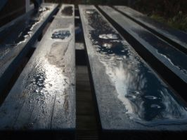 wet bench in the sun by DrawnArt93