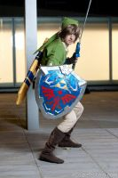 link defense by Spiral-simon
