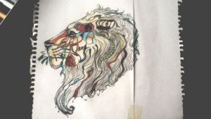 How I learned to draw a lion by Jaglias