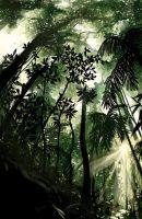 tropical jungle by chisien