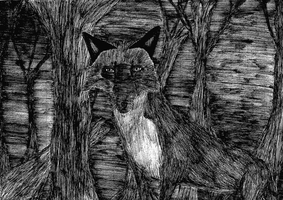 Fox in the dead trees by Llanto-negro