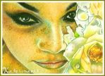 SeaRose Beauty - ACEO by Katerina-Art