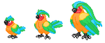 Tropical Pidgey And Forms by Datsexypsychemon