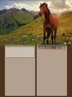StormHeart by FamousShamus109
