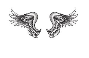 Wings Tattoo by terry33