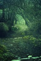 Fairy Path by NeoQueenSerenety