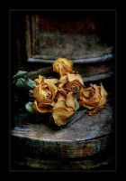 Faded Roses. HDR by AlexEdg