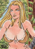 Shanna the She-devil by Spears by markman777