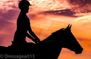 horse silhouette at sunset by dressageart13
