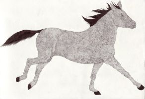 Horse stipple by featheredwing