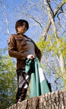 SnK - Into the Woods by nikitachikita005