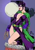 Classic Catwoman By renatocamilo and Bdstevens by SickSean
