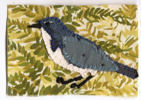 ATC Fabric Scrub Jay A by claudiamm37