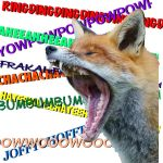 WHAT DOES THE FOX SAY??!!!???!! by Ivyheart090