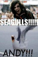 Andy's Seagulls XD by Undead-Purdy