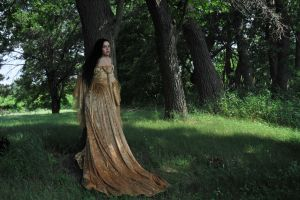 Gold Dress 042 by elusiveelegance