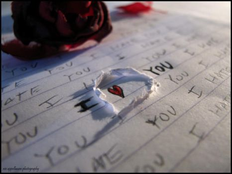 i HATE that i LOVE you by Nivster