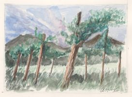 Vines and Mountains by KatyAmlie