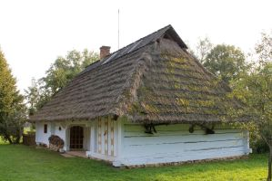 Cottage house 4 by Caltha-stock