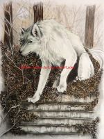 werewolf bookprint by Hollow-Moon-Art