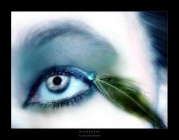 :: Winter eye :: by Liek