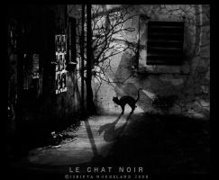 Le chat noir by Isbikta