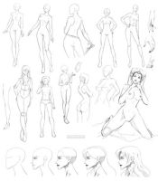 Female anatomy 5 by Precia-T