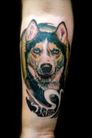 husky dog by tattooneos