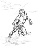 DSC Namor the Sub Mariner Victomon by victomon