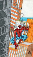Spider-Man by 1-cwc-1
