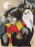 Harry, Hedwig and Hogwarts by Hodges-Art