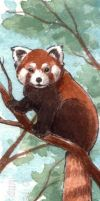 CM - Red panda bookmark by Pannya