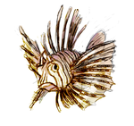 Day 14- Red Lionfish (Pterois volitans) by Cloudwilk