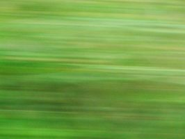 BLURRY GRASS by PUBLIC-DOMAIN-PICS