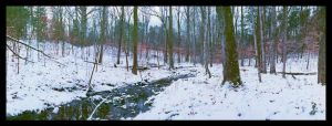 Field snow creek, with story by harrietsfriend