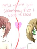 Somebody I Used to Know by black-feather1013