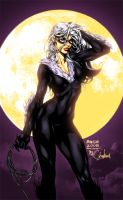 Black Cat by Ch-Hell-Sea