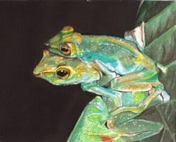 """Happy Frogs"" 2006 by StPeteArtisan"
