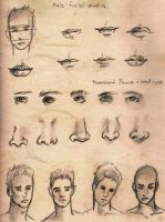 Male Face Study by DrivenLikeTheSnow