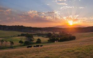 Eurobodalla Sunset by SxyfrG