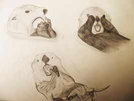 Otter Drawings 2 by hollywood714