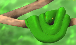 Green Tree Boa by RainThatFallsSoftly