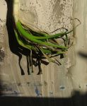 Roots (homage to Jindrich Styrsky) by thergothon