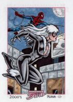 Black Cat Spider-Man Dangerous Divas by tonyperna