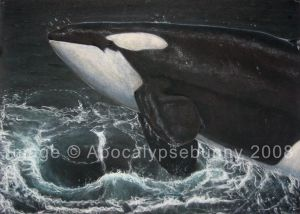 A2 Power Orca Final: Leviathan
