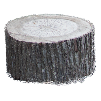 Stock PNG Tree Stump by Earthymoon