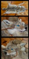 Blind Coyote Headdress sold by Phoenix-Cry