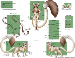 Shadi Character Reference by Shadi-Carcer